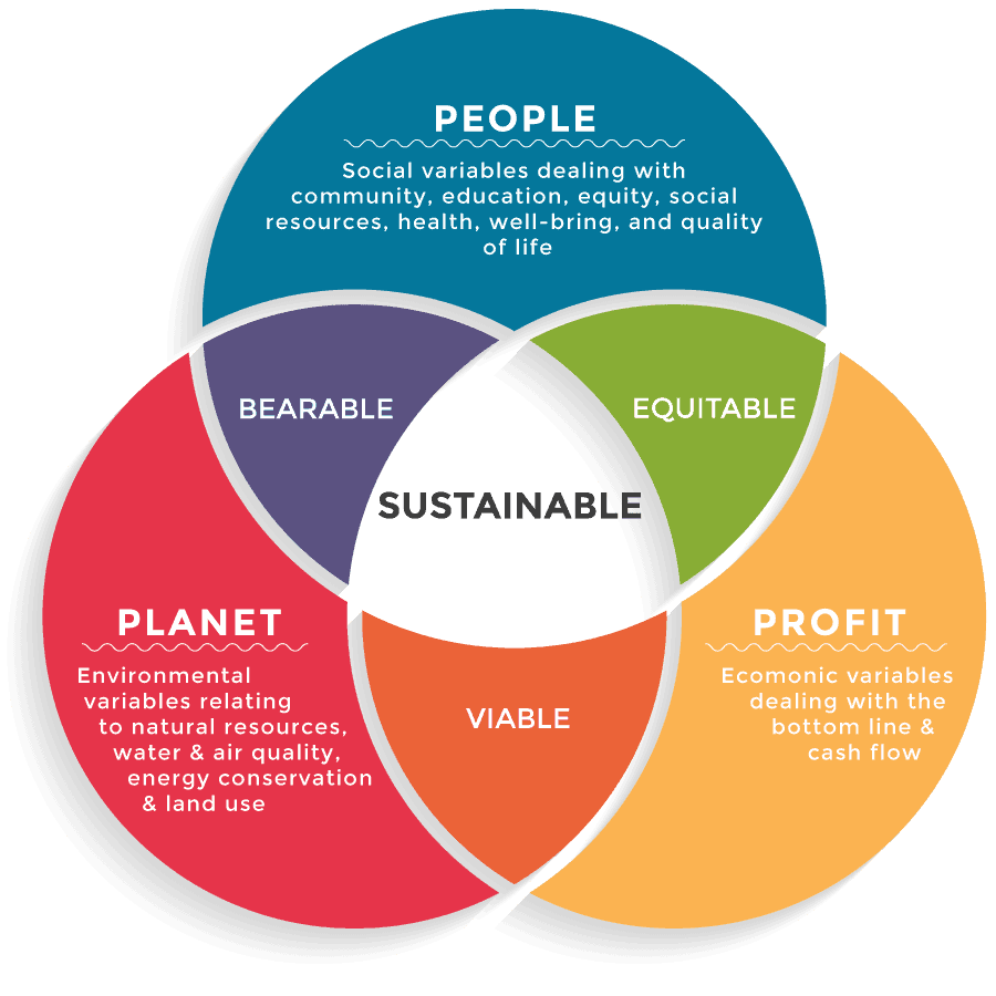 Sustainability consultant, Why I retrained as a Sustainability Consultant