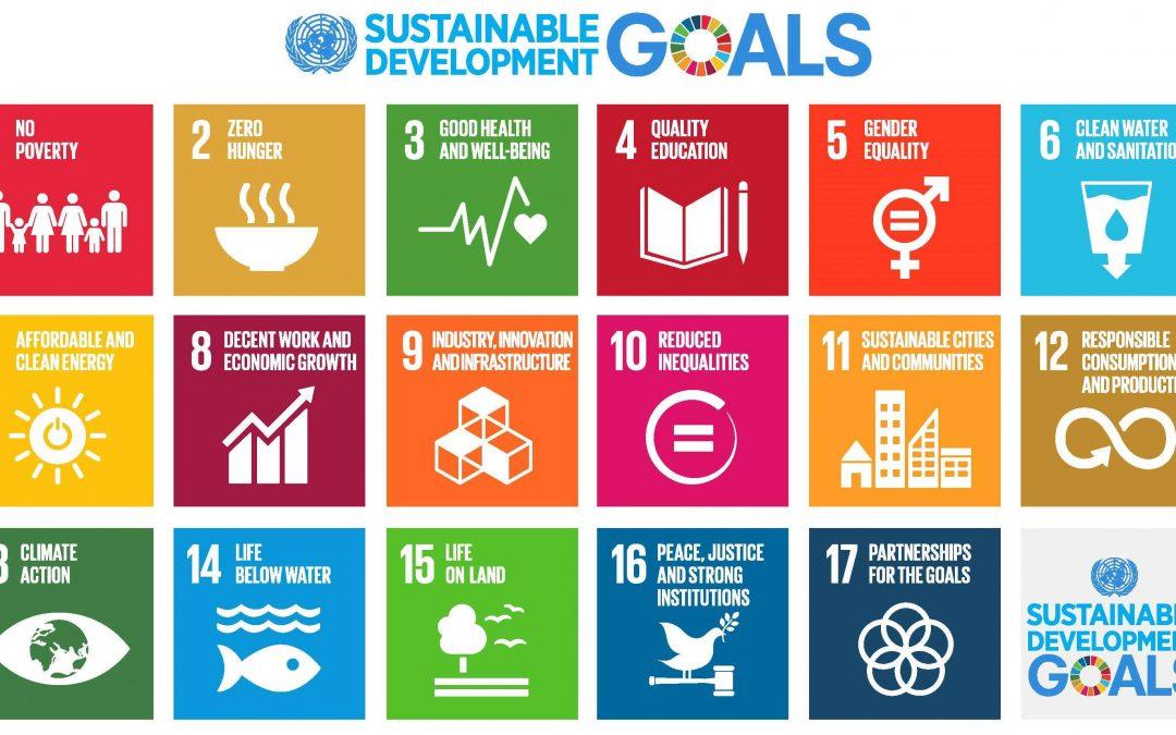 betternotstop: Working Towards The UN's Sustainable Development Goals