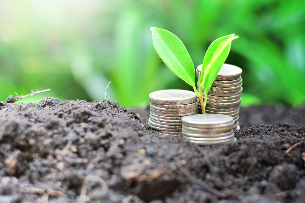 Image of dirt with coins on top, in the middle of the coins there is a green small plant. In the background there are more green leaves blurred out.