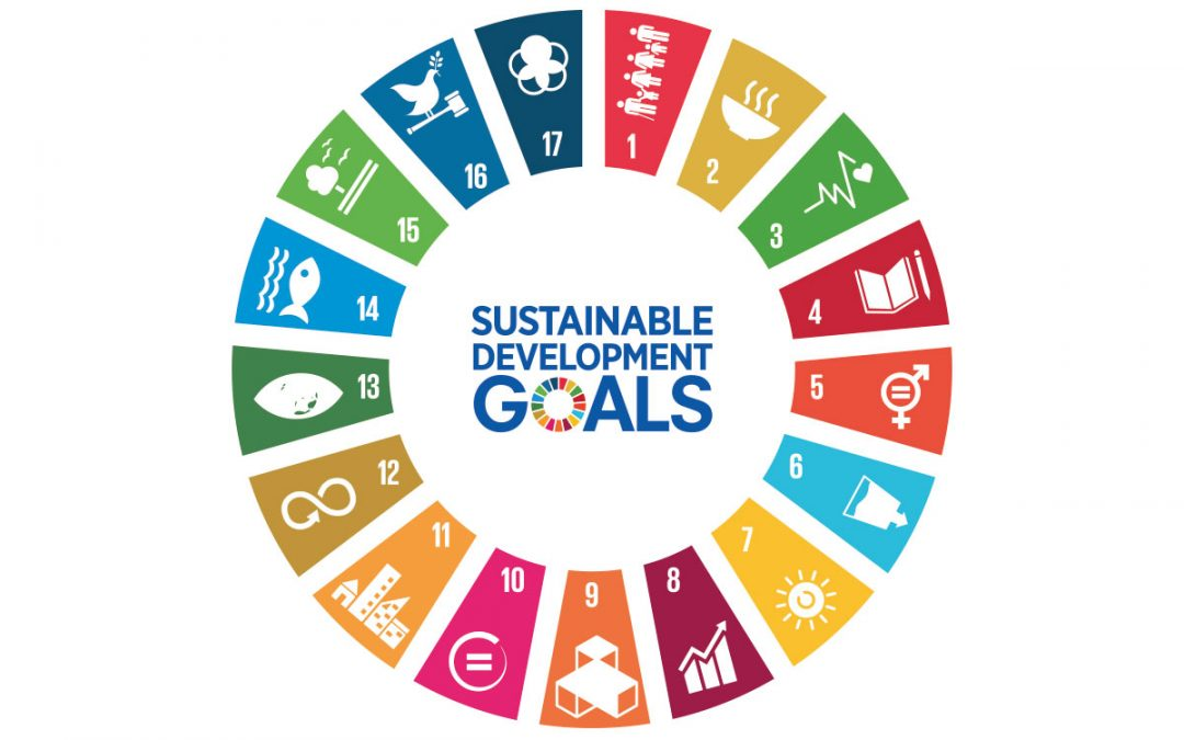 The UN Sustainable Development Goals: How To Choose (And Commit To!) Your Business SDGs